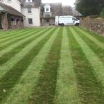 Natural Lawncare